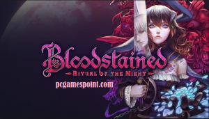 Bloodstained Ritual Of The Night PC Game