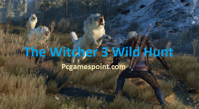 The Witcher 3 Wild Hunt Torrent